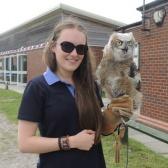 Owl Education