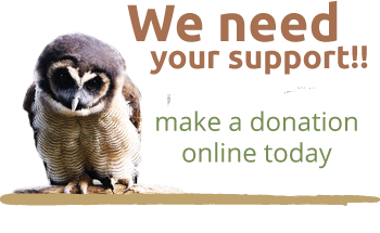 the owls trust - we need your support