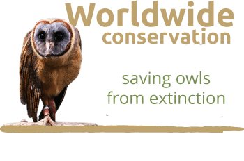 the owls trust worldwide conservation